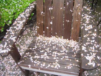 Chairflowersjpg