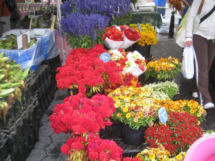10-6flowers
